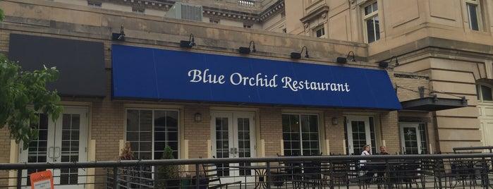Blue Orchid is one of Orte, die Brent gefallen.