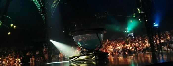 Cirque Du Soleil Amaluna is one of Olgaさんのお気に入りスポット.