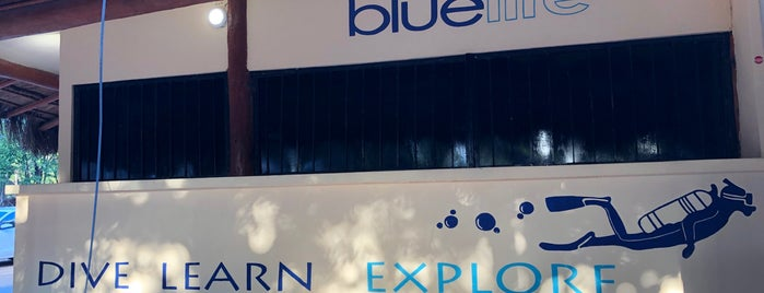 Blue Life is one of สถานที่ที่ Mikael ถูกใจ.