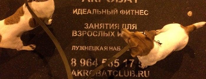 Собачий Парк is one of BH Moscow.