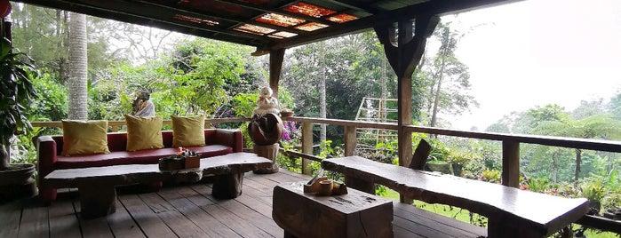 Warung Rekreasi Bedugul is one of Gespeicherte Orte von Daniel.