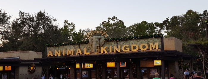 Disney's Animal Kingdom is one of Lieux qui ont plu à Josh.