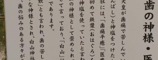 白山神社 is one of Shoheiさんのお気に入りスポット.