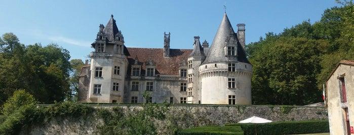 Château de Puyguilhem is one of Châteaux de France.
