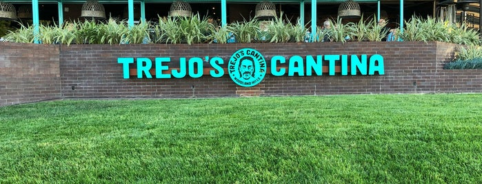 Trejo's Cantina is one of Tempat yang Disukai Diann.