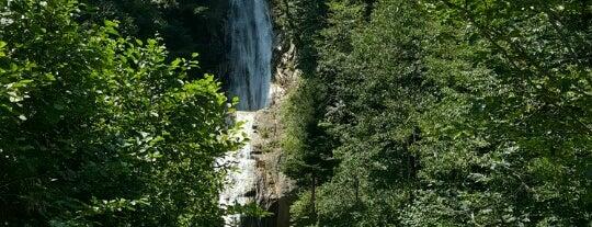 Manle Yaylası is one of Mountain Resorts In Black Sea Region.