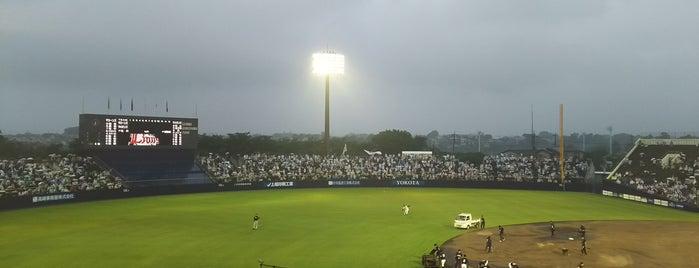 上毛新聞敷島球場 is one of 今まで行った野球場.