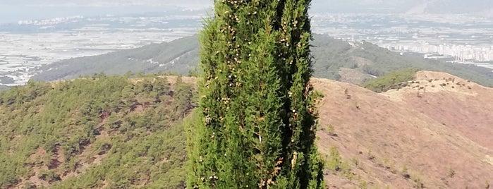 sahin tepesi dinlenme tesisleri is one of Lugares favoritos de Papyon Cicek / Kemer.