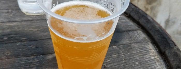 Monument City Brewing Company is one of Locais curtidos por Greg.