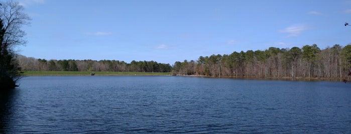 Bond Park Lake Trail is one of jiresell 님이 좋아한 장소.