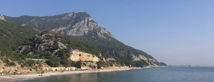 Antalya Balıkçı Barınağı is one of Lugares favoritos de Papyon Cicek / Kemer.