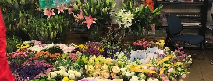 An Shun Lu Flower Market is one of shanghai.