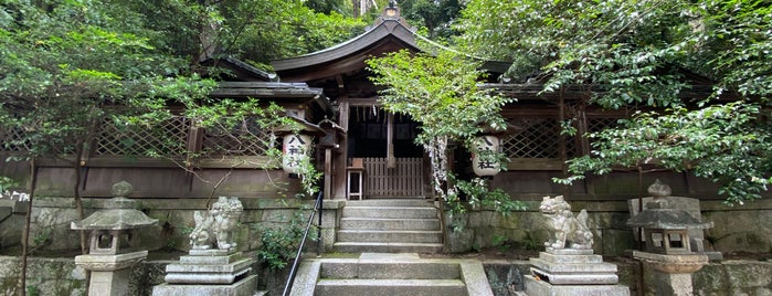 八神社 is one of nikkinihon.