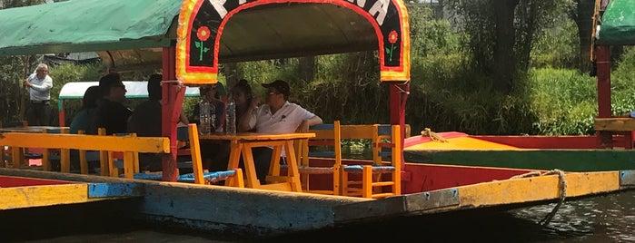 Trajineras Xochimilco is one of Tempat yang Disukai Carlos.