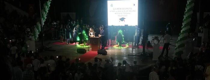 Çukurova Üniversitesi Amfi Tiyatro is one of Fadik 님이 좋아한 장소.
