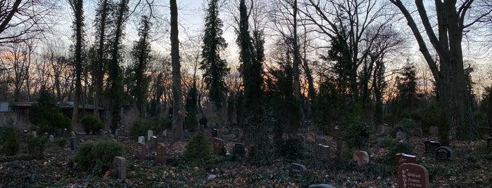 Zentralfriedhof Friedrichsfelde is one of Berlin.