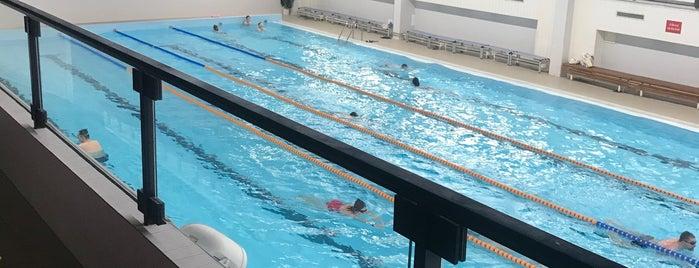 Plavecký bazén Olšanka is one of Денис 님이 좋아한 장소.