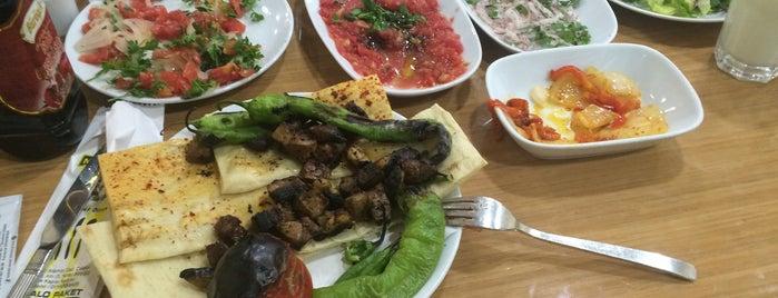 Meşhur Adana Kebapçısı Nâsır Usta is one of Turkey mix.