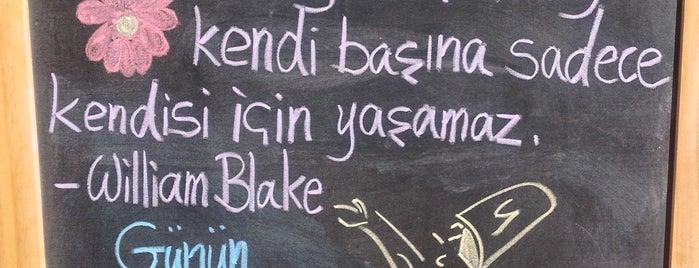 Felsefenin Tadı is one of Lieux qui ont plu à Zeynep.