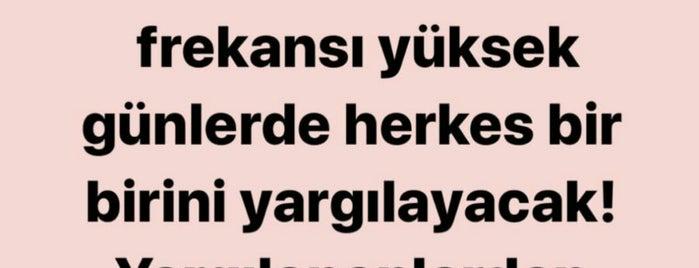 Yiğitler Off Licence is one of สถานที่ที่ Nuran ถูกใจ.