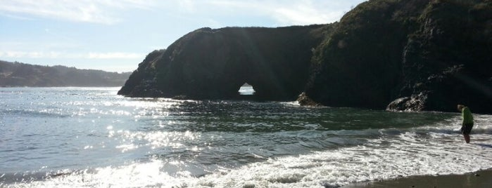 City of Mendocino is one of Best places in California.