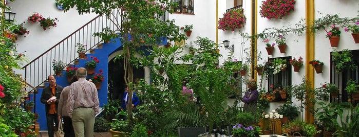 Casa-Patio de la calle Chaparro, 3 is one of Patios de Cordoba ganadores 2013.