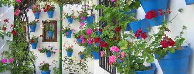 Casa-Patio de la calle Trueque, 4 is one of Visita virtual a los Patios de cordoba.