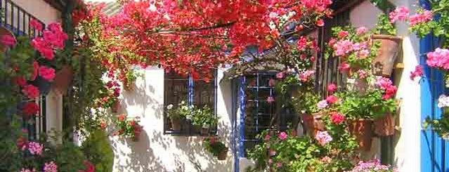 Casa-Patio de la calle Marroquies, 6 is one of Visita virtual a los Patios de cordoba.