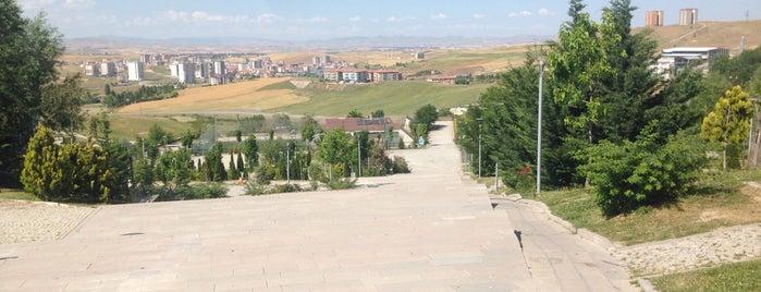 Tebessüm Piknik Alanı is one of Park.