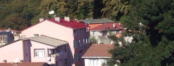 Bahçeköy Saklı Koru Evleri is one of Istanbul.
