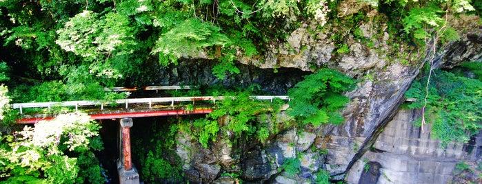 高藪第一隧道 高籔第二隧道 is one of 四国の酷道・険道・死道・淋道・窮道.