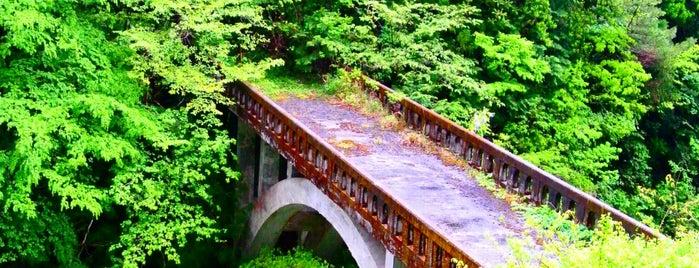 旧開拓橋 is one of 四国の酷道・険道・死道・淋道・窮道.
