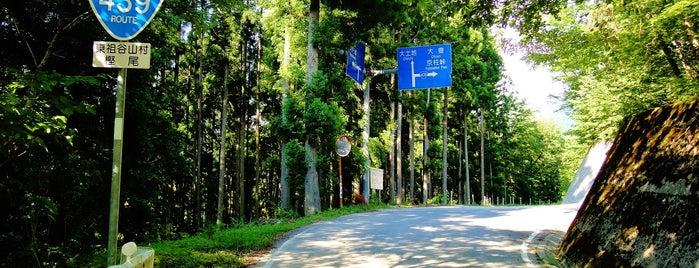 国道439号 林道樫尾阿佐線(祖谷山林道) 起点 is one of 四国の酷道・険道・死道・淋道・窮道.