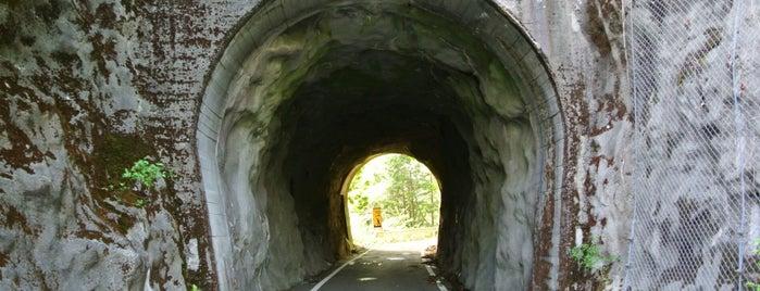 第一号坂瀬隧道、第二号坂瀬隧道 is one of 四国の酷道・険道・死道・淋道・窮道.