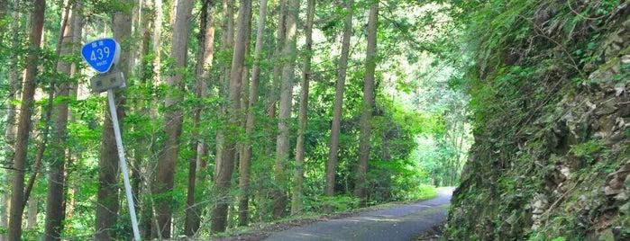 酷道439号 蕨谷おにぎり is one of 四国の酷道・険道・死道・淋道・窮道.