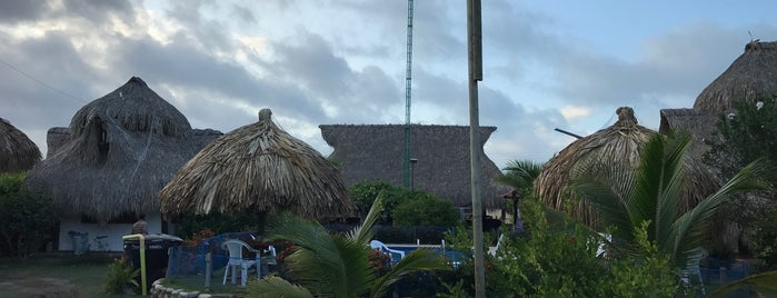 Palomino Breeze Hostel is one of Hoteles.