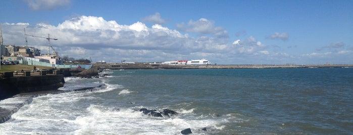 Sandycove Beach is one of Loredana's Liked Places.