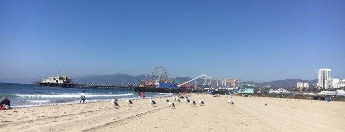 Santa Monica State Beach is one of Lugares favoritos de Jade.