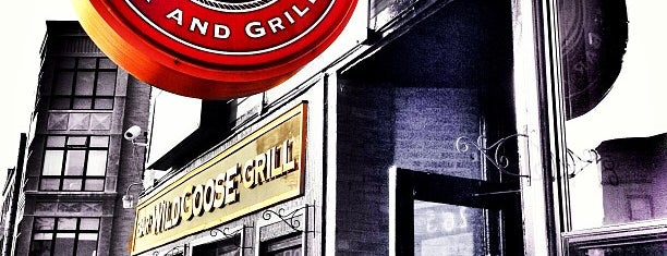 Wild Goose Bar & Grill is one of Chicago.