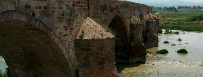 Tarihi Çobandede Köprüsü is one of ERZURUM.