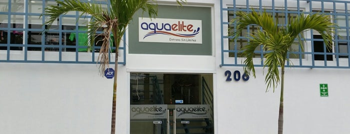 Aquaelite is one of Posti che sono piaciuti a @davidaustria.