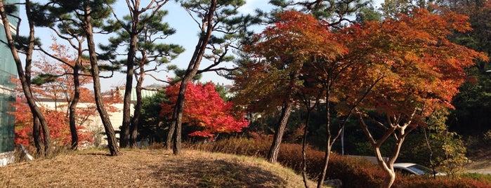 서울대학교 83동 멀티미디어강의동 is one of Lugares favoritos de Kyusang.