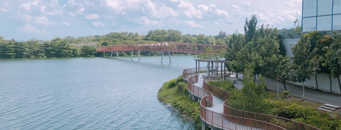 Lorong Halus Wetland is one of Singapore 2019.