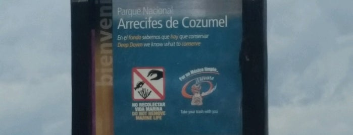 Parque Nacional de Arrecifes Cozumel is one of สถานที่ที่ Isabel ถูกใจ.