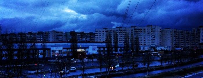 Сквер им. Советско-Болгарской дружбы is one of Lugares favoritos de Sergey.