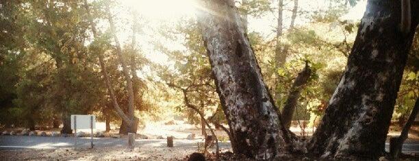 Arroyo Campground is one of Lugares favoritos de Ryan.