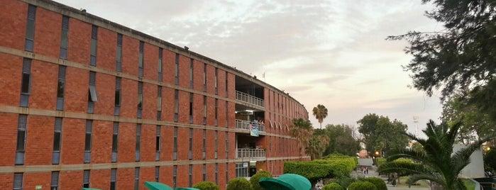 Centro Universitario de Ciencias Sociales y Humanidades (CUCSH) is one of Orte, die Ana gefallen.