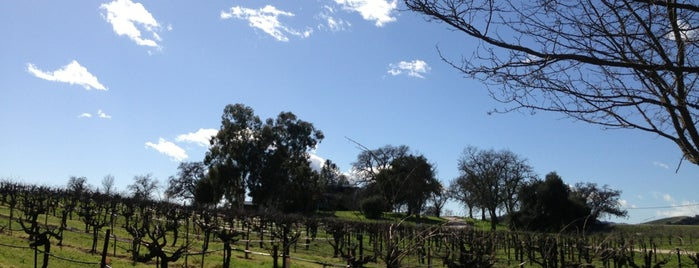 Paso Wine Centre is one of Sip & Swirl.