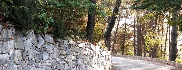 Kemer Country Orman Evleri is one of JUUL 님이 좋아한 장소.