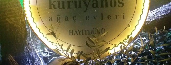 Kuruyanos Ağaç Evleri is one of Konaklama mekanları.